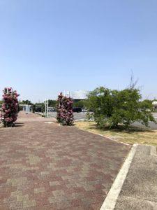 万博公園・駐車場
