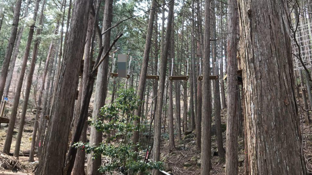 冒険の森のせ冒険の森のせ